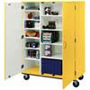 School/Classroom Storage